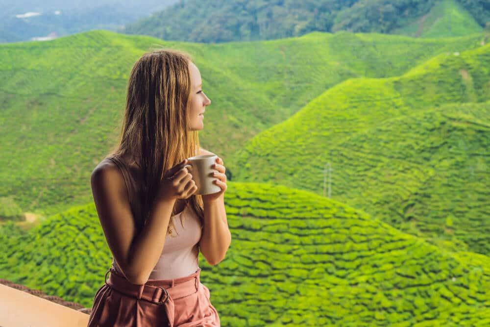 herbata przeciwutleniacze