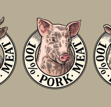 najlepszy rodzaj mięsa