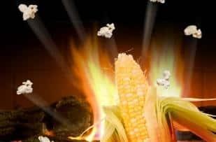 Jedzenie mogące powodować raka – część 1