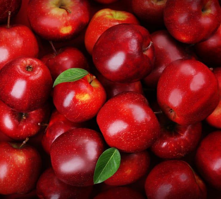 Najlepsza odmiana jabłek
