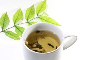 zielona herbata a pamięć