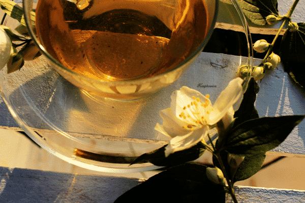 herbata jaśminowa 2