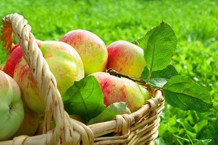Pestycydy – zawartość wżywności nieprzetworzonej