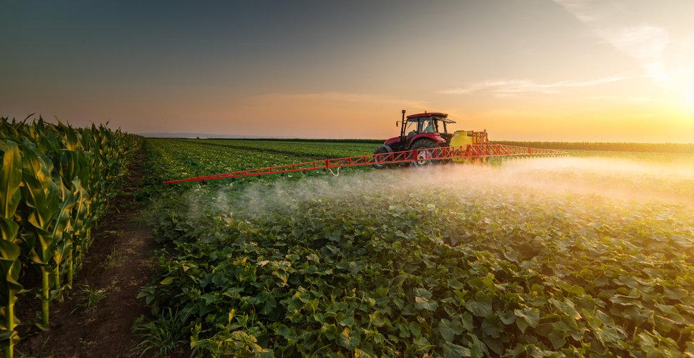 Pestycydy Zawartość W żywności Nieprzetworzonej Dietetycyorgpl