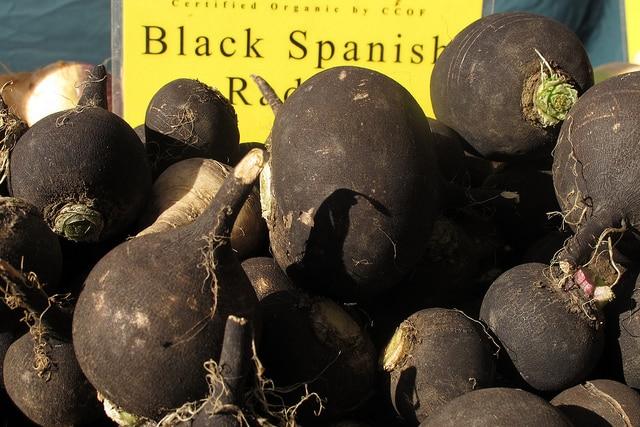 Czarna rzepa – właściwości