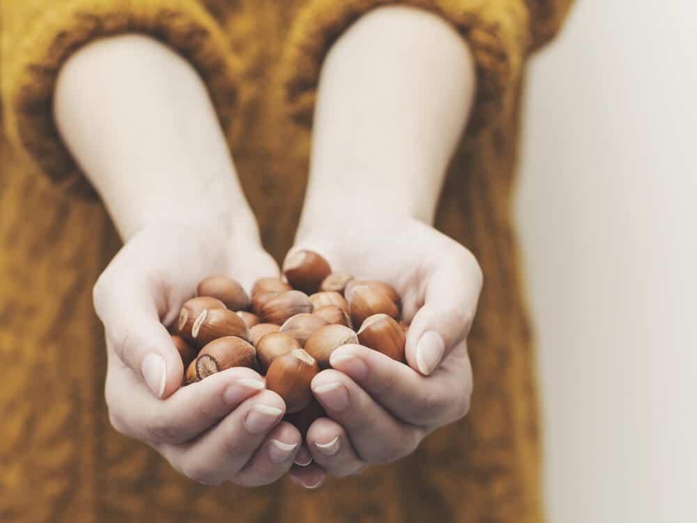 korzyści ze spożycia orzechów