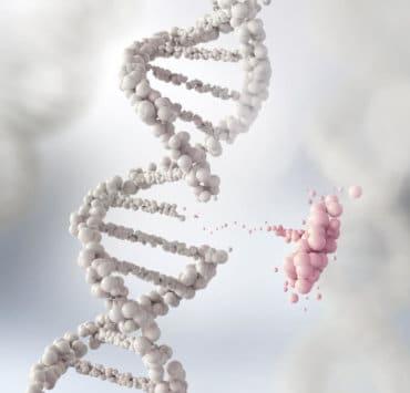 modyfikacja genów otyłość