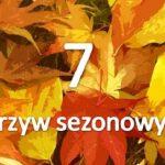 7 cennych warzyw sezonowych na jesień