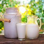 Probiotyki – samo zdrowie ?