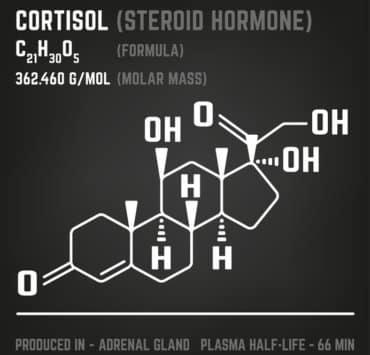 kortyzol