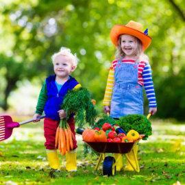 przemytnicy warzyw
