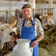 fakty i mity o mleku