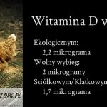 Jajka kur z wolnego wybiegu z 30% większą ilością witaminy D