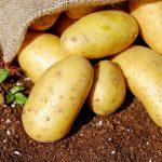 Co z tymi ziemniakami?