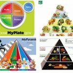 Zmiany Piramidy Żywienia na przestrzeni lat