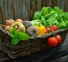 Dieta roślinna pomocna w leczeniu refluksu krtaniowo-gardłowego?