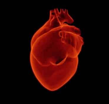 whr serce