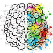 praca mózgu
