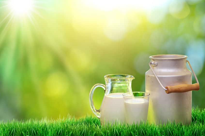 pełnotłuste produkty mleczne