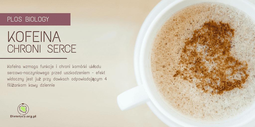 kofeina a serce