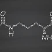 cytrulina
