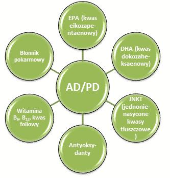 choroby neurodegeneracyjne dieta