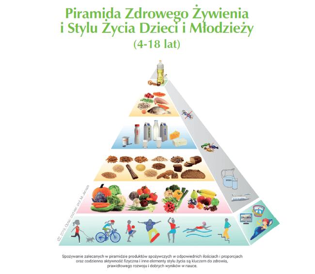 piramida zywienia
