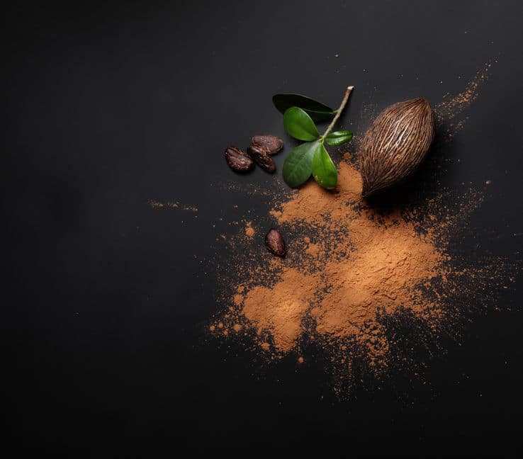 kakao stwardnienie rozsiane