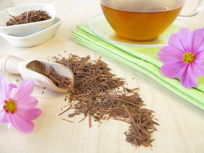 lapacho herbata