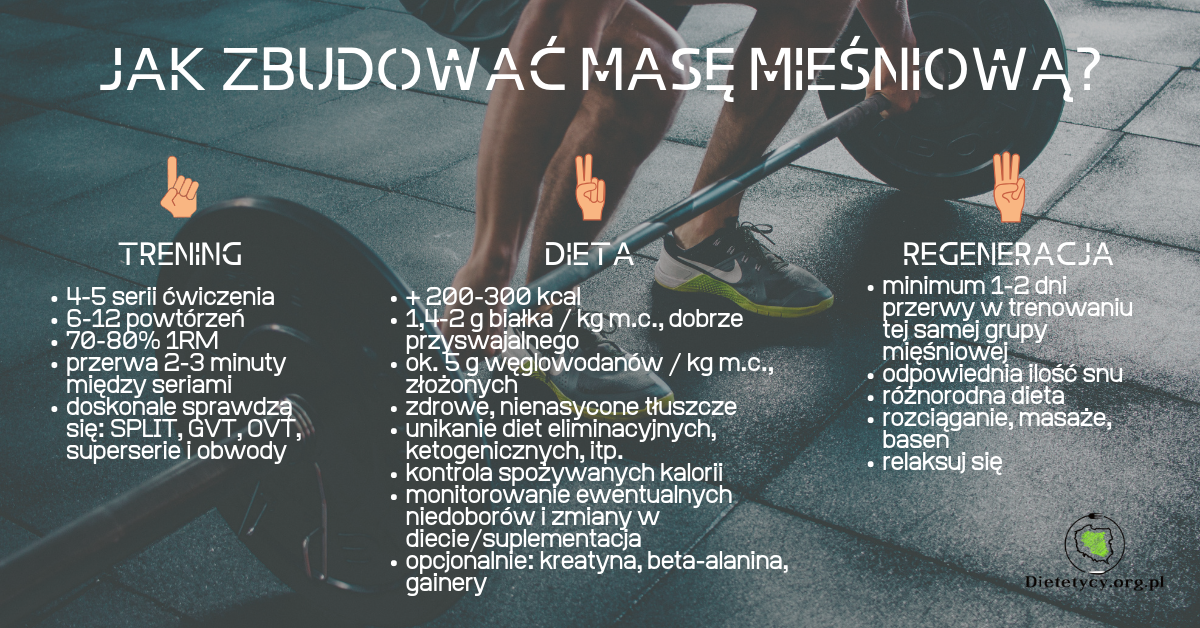 jak zbudować masę mięśniową