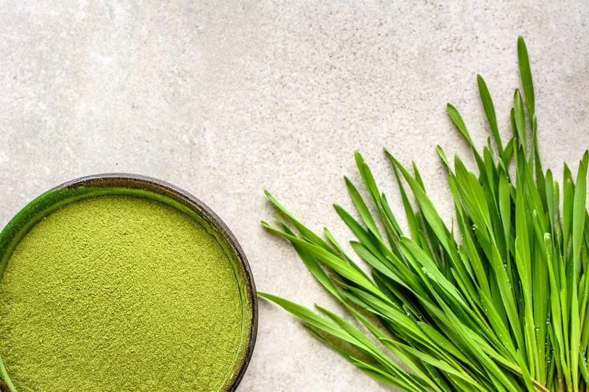 zielony jęczmień proszek