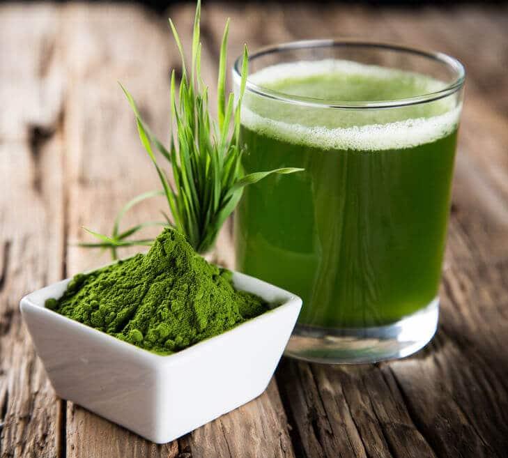 sok zielony jęczmień