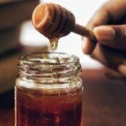 dlaczego warto jeść miód