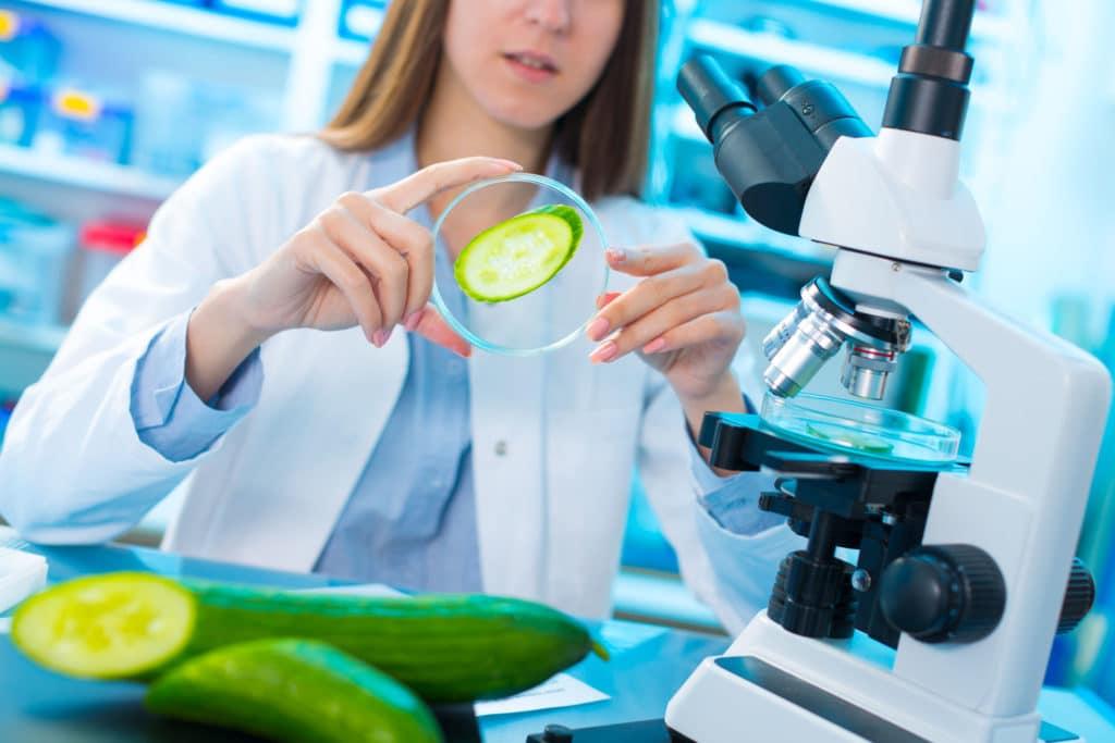 badania żywność
