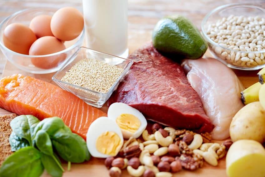 białko dieta