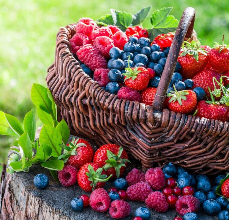 owoce jagodowe