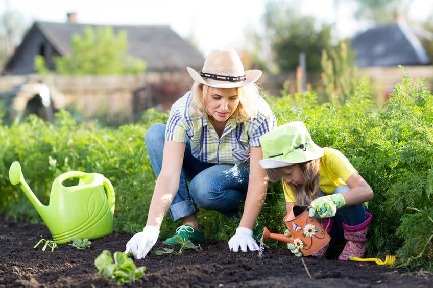 warzywa rodzice