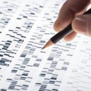 geny otyłość