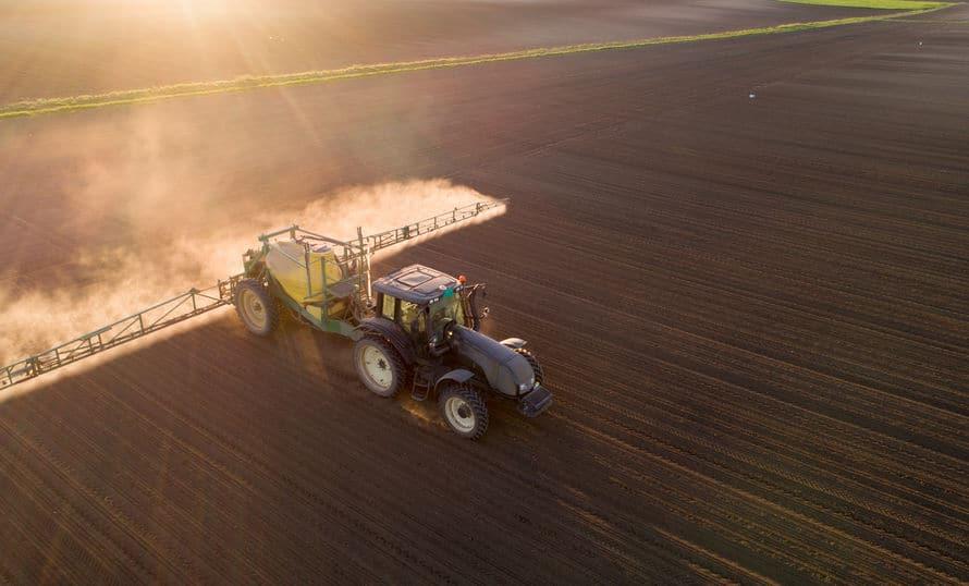 pestycydy żywność