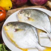 ryba maślana