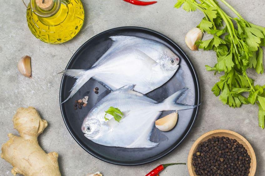 ryba maślana świeża