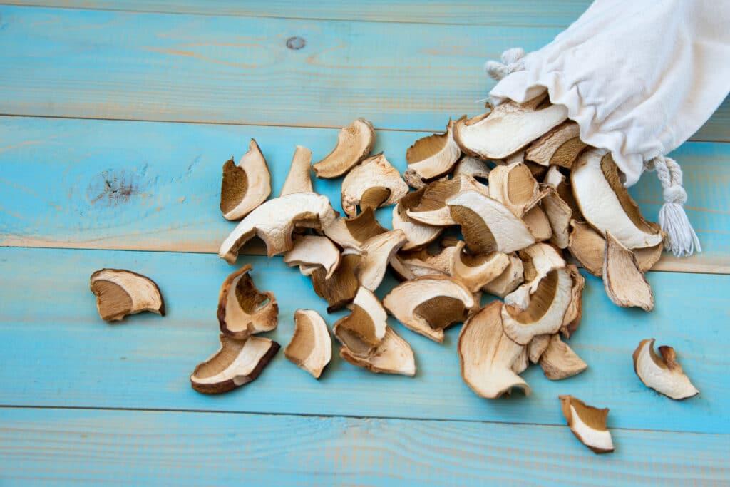 przechowywanie grzybów