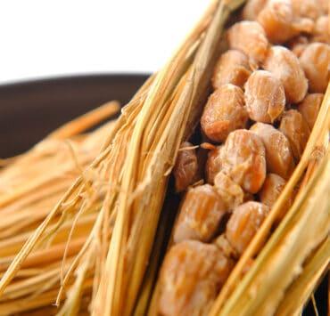 natto soja