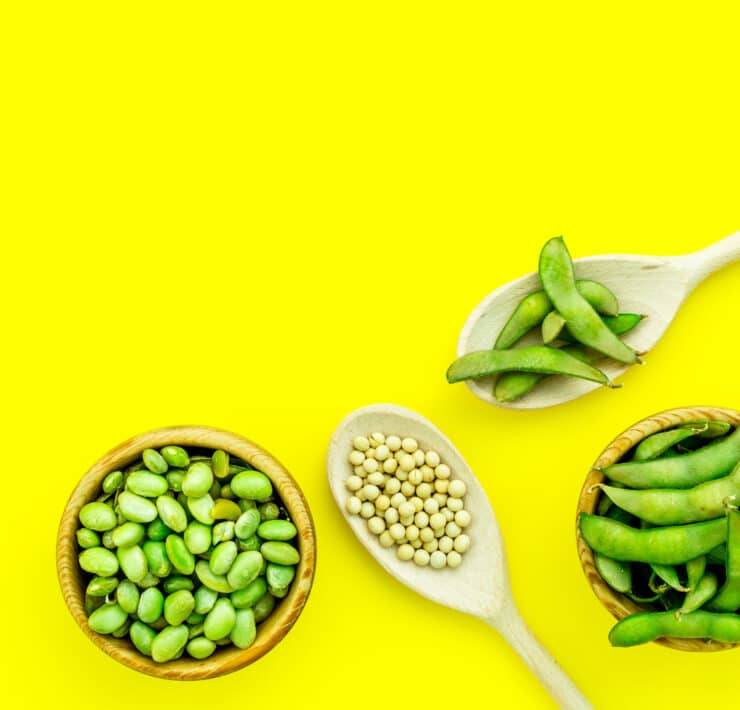 masa na diecie wegetariańskiej