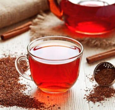 herbata z czerwonokrzewu