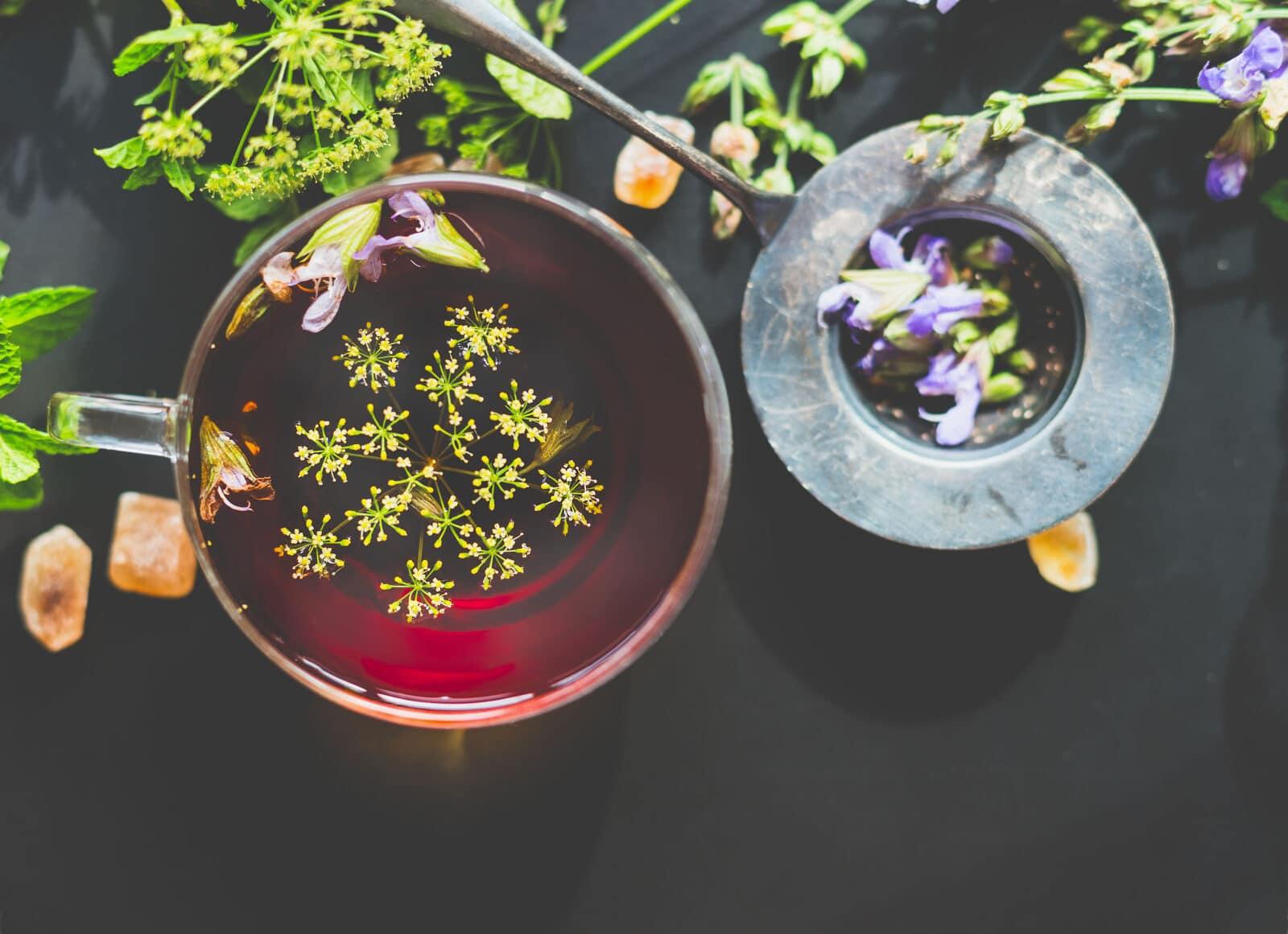 herbatka koperkowa