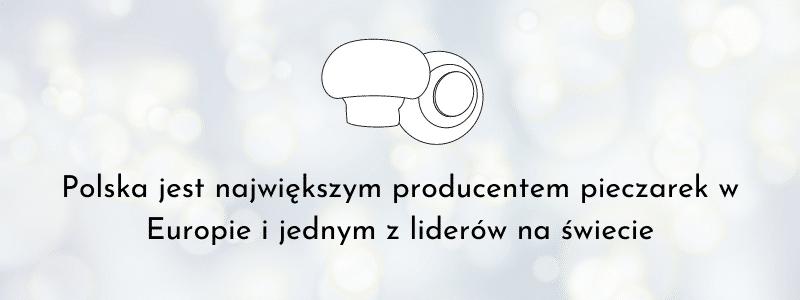 polskie pieczarki