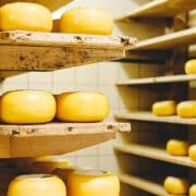 przechowywanie sera