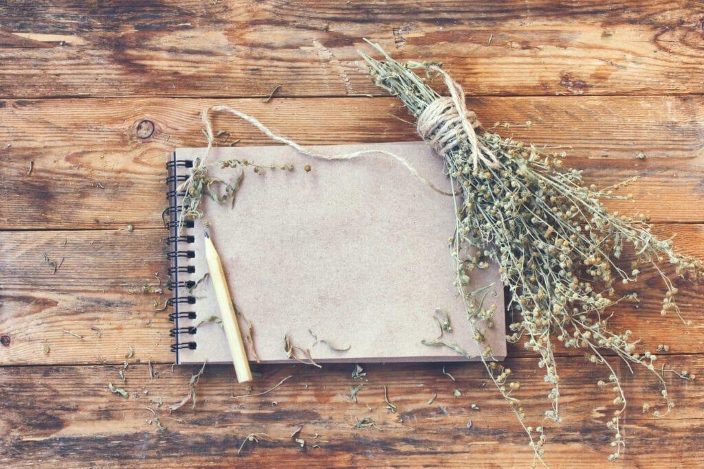 piołun notatnik