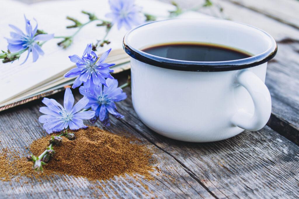 kawa z cykorii